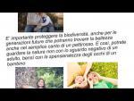 Embedded thumbnail for La biodiversità cl2 Chies